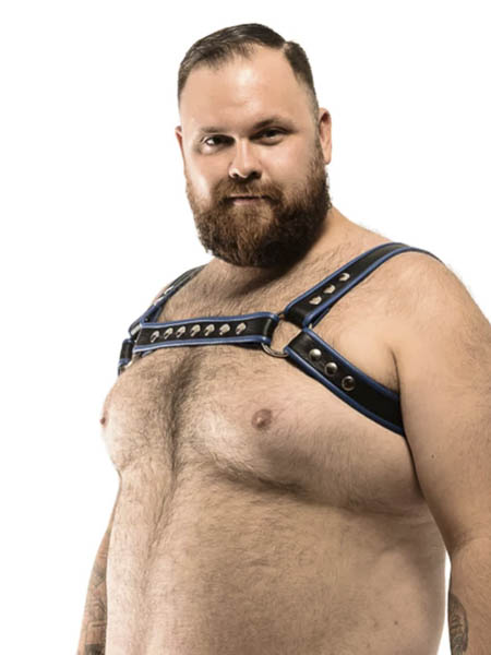 Leather ''Horness'' Harness